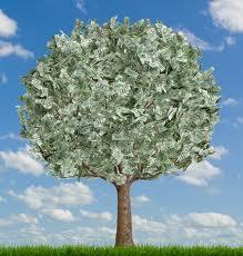 Ianuarie, lună bună pentru fonduri de investiţii