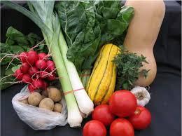 Embargoul rus asupra alimentelor din UE va costa Europa 5 mld. euro pe an