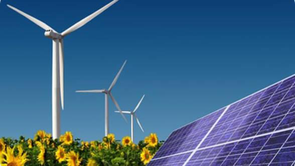 Producătorii de energie regenerabilă cer ANRE înlocuirea schemei certificatelor verzi