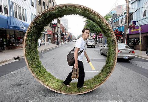 PACT:  Autoritățile locale nu respectă legea privind spaţiile verzi