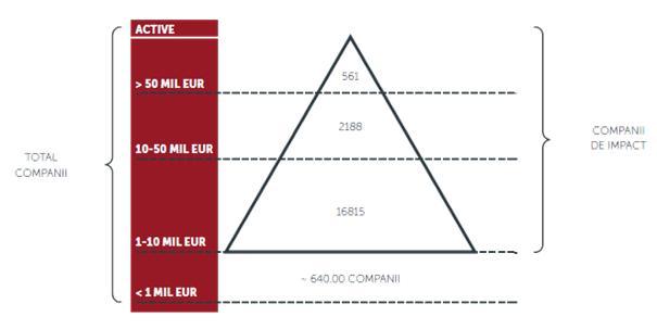 CITR: România vulnerabilă – 1% dintre companiile noastre au venituri mai mari decât restul de 99%