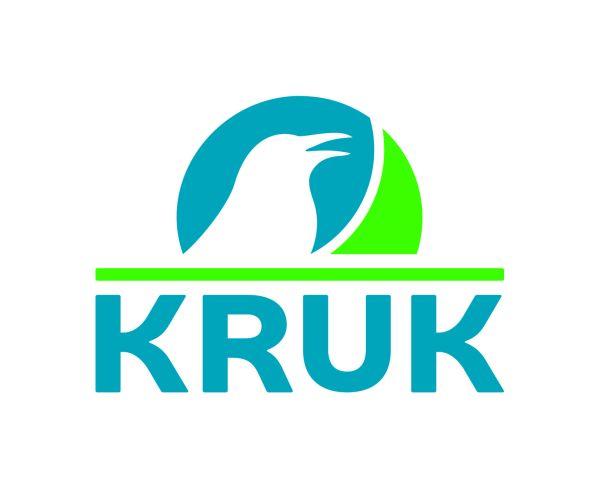 Grupul KRUK, 19 milioane de euro profit net în T1 2017